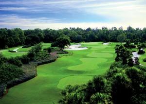 Real Estate Ritz Carlton Golf Club Sarasota