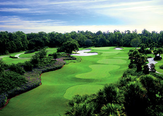 Real Estate Ritz Carlton Golf Club Sarasota