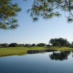 Real Estate in Rosedale Golf & Country Club