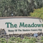 The Meadows Sarasota Real Estate