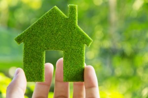 green-building-icon-in-hand