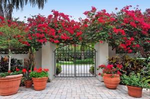 Beauty gate