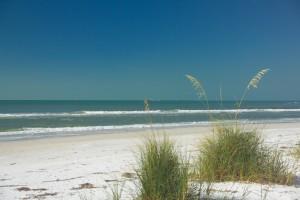 Beach,oats
